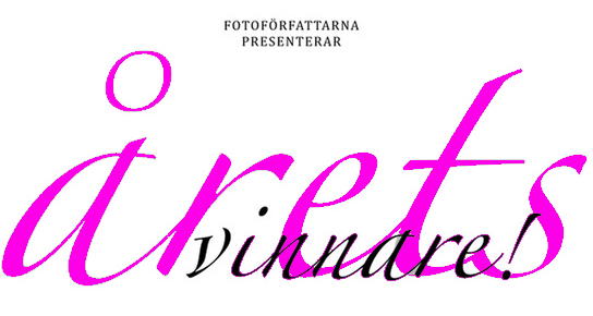 Prisutdelning Svenska Fotobokspriset