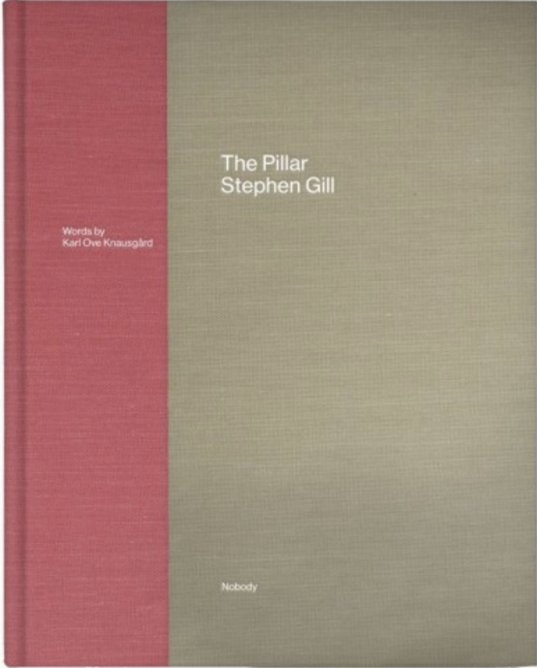 "Stephen Gill: ""The Pillar"""