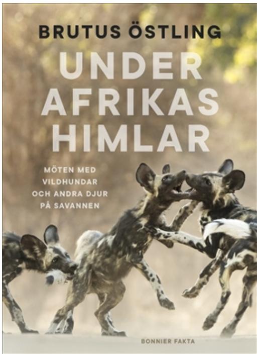 "Brutus Östling: ""Under Afrikas himlar"""