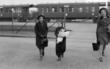 Jag kom ensam - Judiska flyktingbarn i Sverige