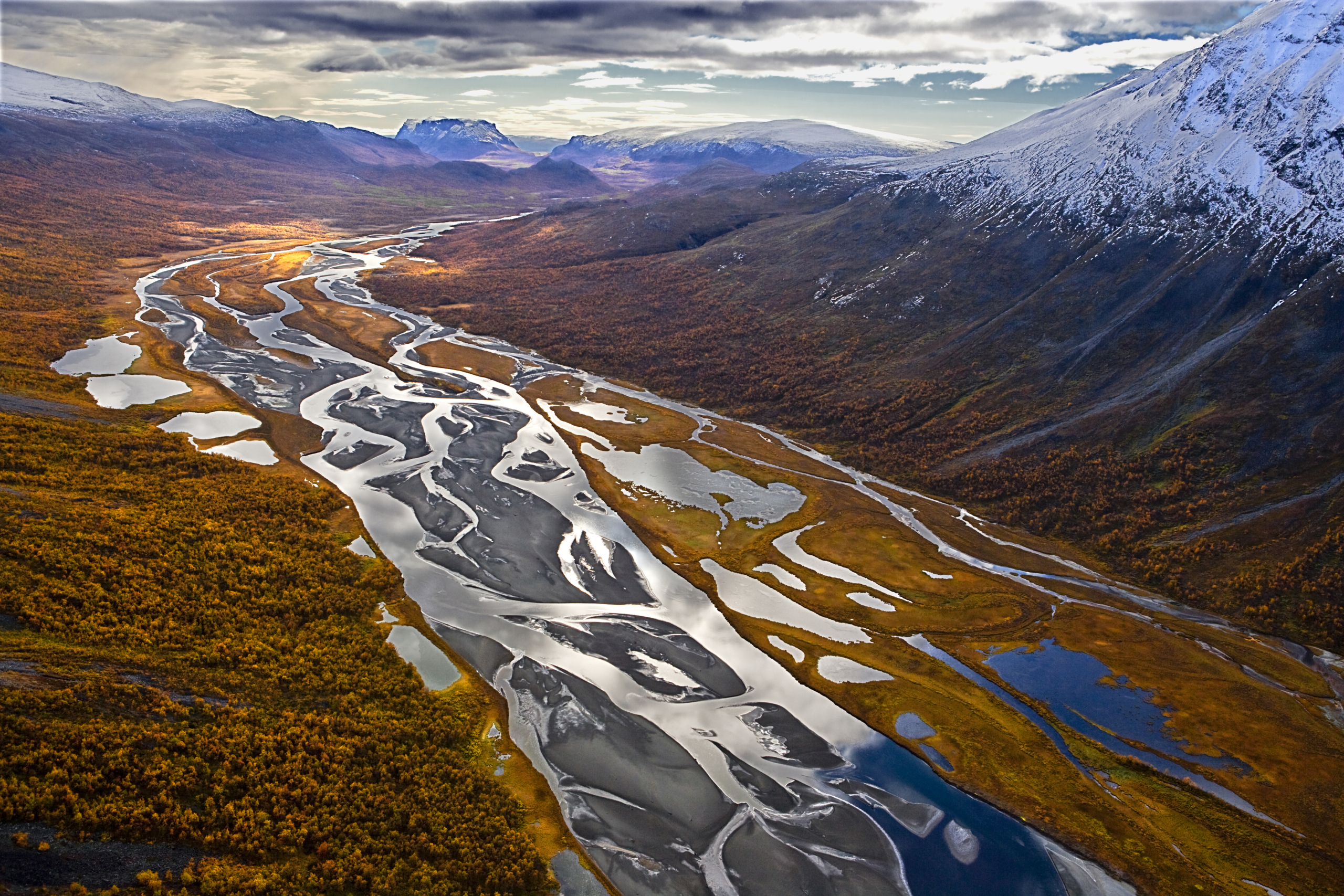 Peter Hanneberg utsedd till årets naturfotograf