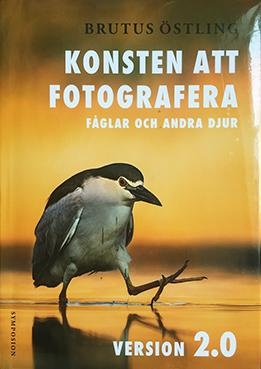 """Brutus Östling: """"Konsten att fotografer fåglar och andra djur, version 2.0"""""""